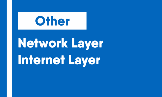Network Layer/Internet Layer